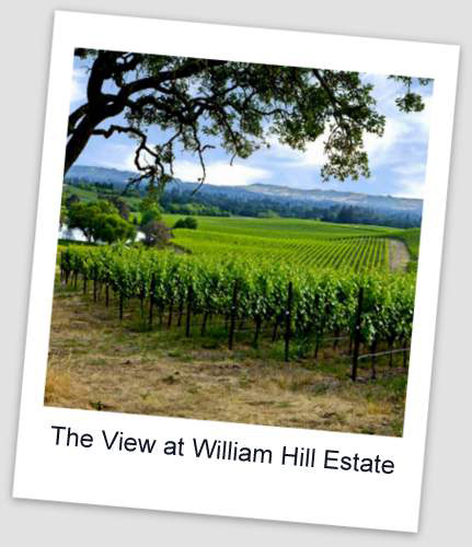 Wiliam Hill Estate2 Special Tastings & Tours in Napa Valley
