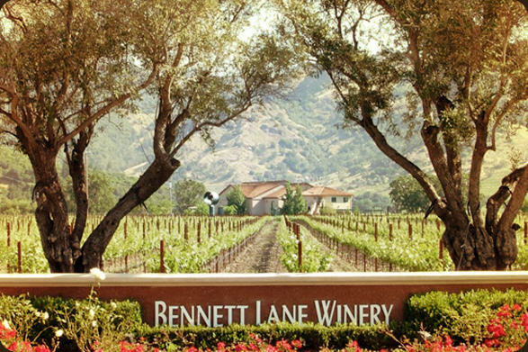 bennett lane winery Calistoga Food & Wine Event