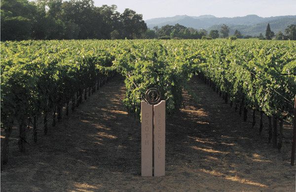 The Thriving Vineyards of Groth Vineyards & Winery Located in the Oakville AVA