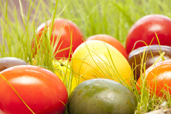 colorful easter eggs Celebrating Easter Sunday in Napa Valley